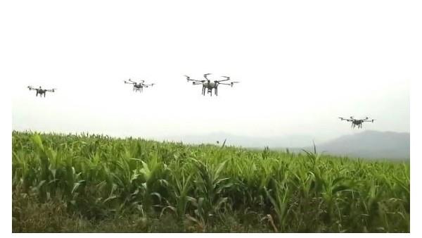 儒佳砂磨机在农药领域发展