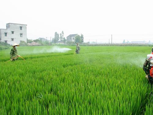 农业农药砂磨机制备